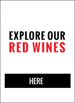 Explore Our Red Wines