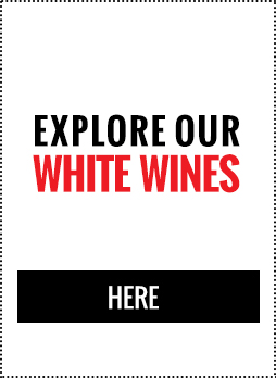 Discover Our White Wines