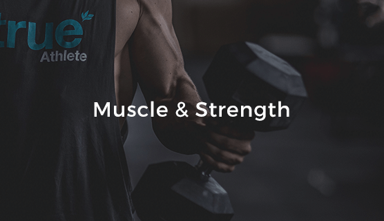 Muscle & Strength