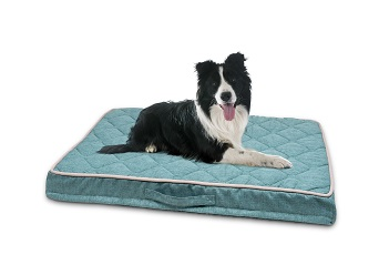 PetLife Odour Resistant Ortho Quilted Mattress Medium in Teal