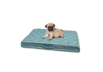 PetLife Odour Resistant Ortho Quilted Mattress Small in Teal