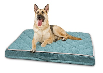 PetLife Odour Resistant Ortho Quilted Mattress Large in Teal
